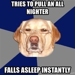Racist Dog - Tries to pull an all nighter Falls asleep instantly