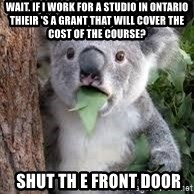koalaaaaa - wait. If I work for a studio in ontario thieir 's a grant that will cover the cost of the course?  Shut th e front door
