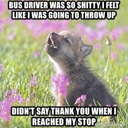 Baby Insanity Wolf - Bus driver was so shitty i felt like I was going tO throw up Didn't say thank you when i reached my stop