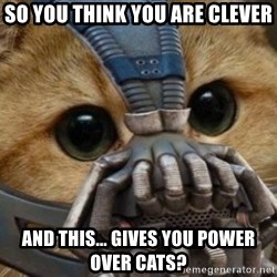 bane cat - So you think you are clever ANd this... gives you power over cats?