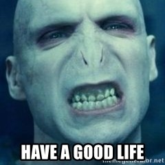 Angry Voldemort -  Have a good life