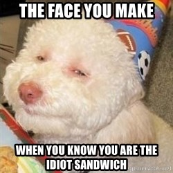 Troll dog - The face you make  when you know you are the idiot sandwich