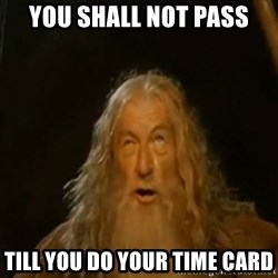 Gandalf You Shall Not Pass - You shall not pass till you do your time card