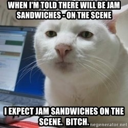 Serious Cat - When i'm told there will be jam sandwiches - on the scene I EXPECT JAM SANDWICHES oN THE SCENE.  bitch.