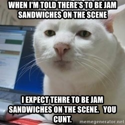 Serious Cat - when i'm told there's to be jam sandwiches on the scene i expect tehre to be jam sandwiches on the scene.   You cunt.