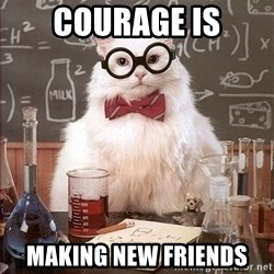 Science Cat - courage is making new friends