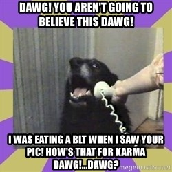Yes, this is dog! - Dawg! You aren'T Going to believe this Dawg! I was eating a BLT when i saw your pic! How's that for karma Dawg!...Dawg?