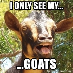 Illogical Goat - I only see my... ...GOATS