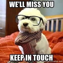 hipster dog - We'll miss you keep in touch