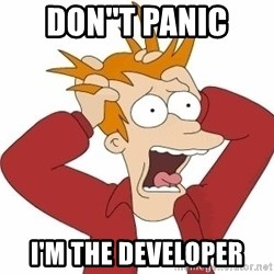 Fry Panic - DON''T PANIC I'M THE DEVELOPER