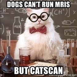 Science Cat - Dogs can't run mris But catscan