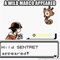 a wild pokemon appeared - A WILD MARCO APPEARED