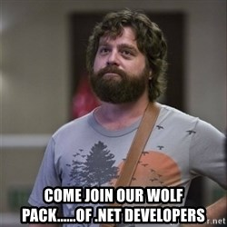 Alan Hangover -  come join our wolf pack......of .net developers