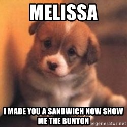 cute puppy - Melissa I made you a sandwich now show me the bunyon