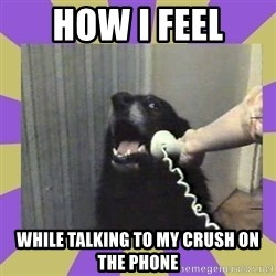 Yes, this is dog! - How I feel While talking to my crush on the phone