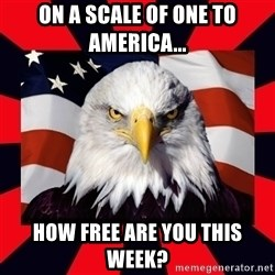 Bald Eagle - On a scale of one to America... How free are you this week?