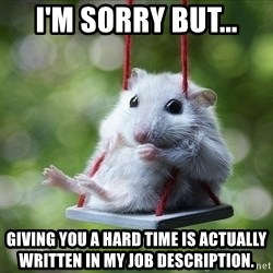 Sorry I'm not Sorry - I'm sorry but... giving you a hard time is actually written in my job description.