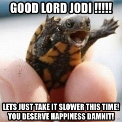 angry turtle - Good lord Jodi !!!!! Lets just take it slower this time! You deserve happiness damnit!
