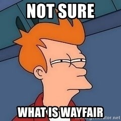 Fry squint - Not sure what is wayfair