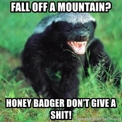 Honey Badger Actual - Fall off a mouNtain? Honey badger don't give a shit!