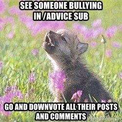 Baby Insanity Wolf - See someone bullying in /advice sub Go and downvote all their posts and comments