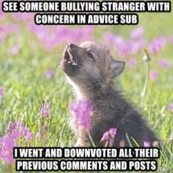 Baby Insanity Wolf - See someone bullying Stranger With concern in advice sub I went and downvoted all their previous comments and posts