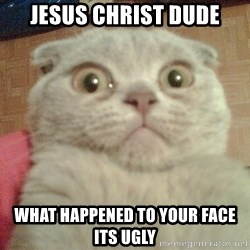 GEEZUS cat - Jesus Christ dude What happened to your face its ugly