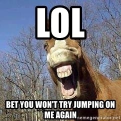 Horse - lol bet you won't try jumping on me again
