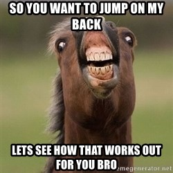 Horse - so you want to jump on my back lets see how that works out for you bro
