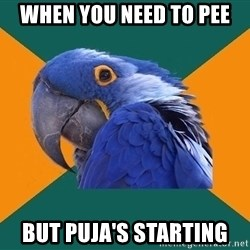 Paranoid Parrot - When you need to pee but puja's starting