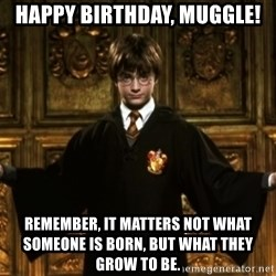 Harry Potter Come At Me Bro - happy birthday, muggle! remember, It matters not what someone is born, but what they grow to be.
