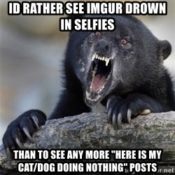 """Insane Confession Bear - Id Rather see imgur drown in selfies  ThAn to see any more """"here is my cat/dog doing nothing"""" posts"""