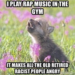 Baby Insanity Wolf - I play rap music in the gym It MAKEs all the old retired racist people angry