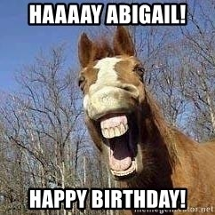 Horse - Haaaay Abigail! Happy birthday!