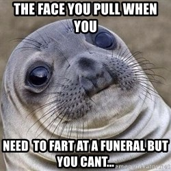 Awkward Seal - the face you pull when you  need  to fart at a funeral but you cant...