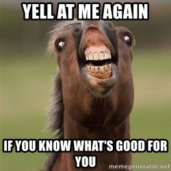 Horse - yell at me again if you know what's good for you