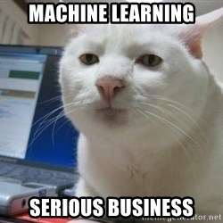 Serious Cat - machine learning serious business