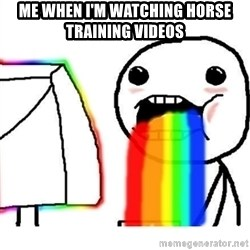 Puking Rainbows - me when i'm watching horse training videos