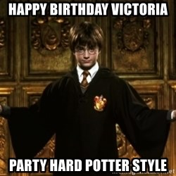 Harry Potter Come At Me Bro - Happy Birthday Victoria  Party hard potter style