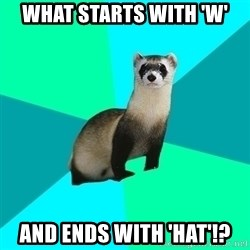 Obvious Question Ferret - What starts with 'W' And ends with 'Hat'!?