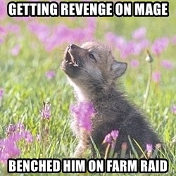 Baby Insanity Wolf - getting revenge on mage benched him on farm raid