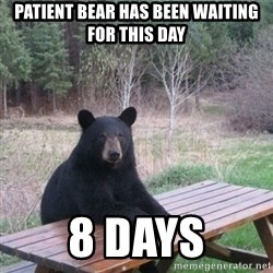 Patient Bear - patient bear HAS BEEN WAITING FOR THIS DAY 8 days