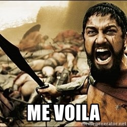 This Is Sparta Meme -  me voila