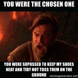 """Obi Wan Kenobi """"You were my brother!"""" - You were the chosen one You were supossed to keep my shoes neat and tidy not toss them on the ground"""