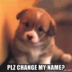 cute puppy -  plz change my name?