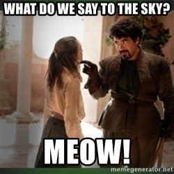 What do we say to the god of death ?  - What do we say to the sky? meow!