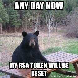 Patient Bear - Any day now my RSA token will be reset