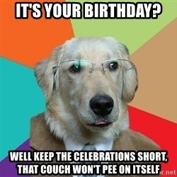 Business Dog - It's your birthday? well keep the celebrations short, that couch won't pee on itself