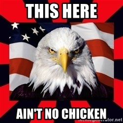 Bald Eagle - THIS HERE AIN'T NO CHICKEN