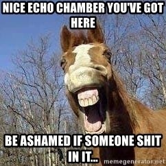 Horse - Nice echo chamber you've got here be ashamed if someone shit in it...